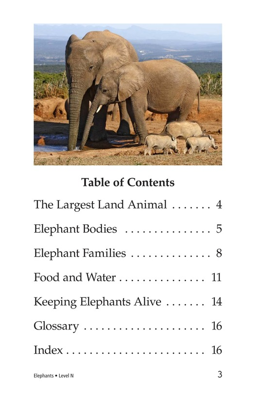 Book Preview For Elephants Page 3