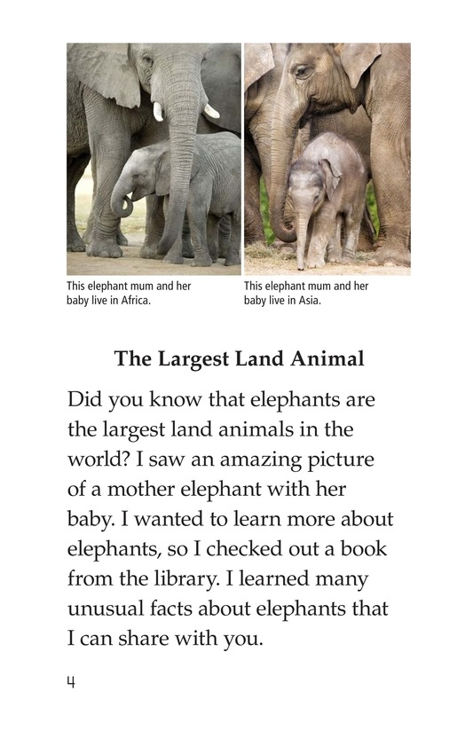 Book Preview For Elephants Page 4
