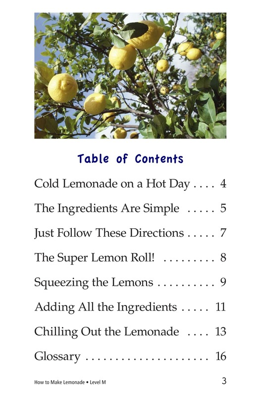 Book Preview For How to Make Lemonade Page 3