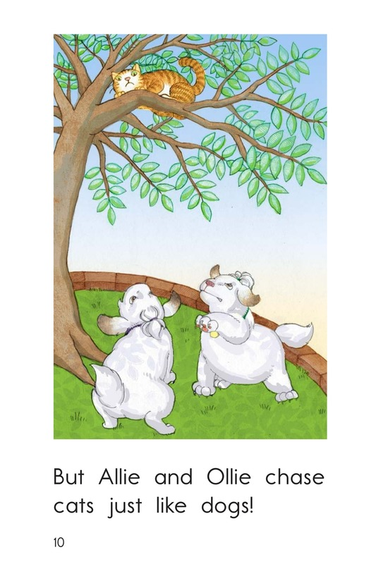 Book Preview For Allie and Ollie Page 10