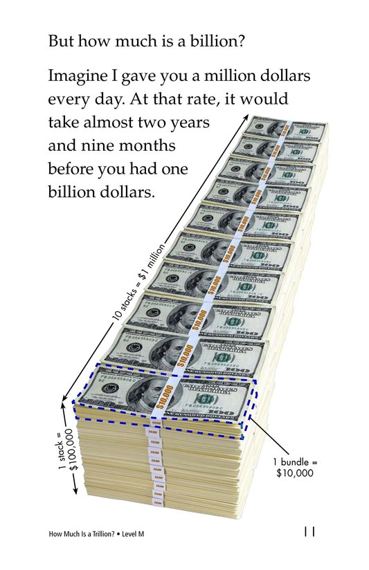 Book Preview For How Much Is a Trillion? Page 11