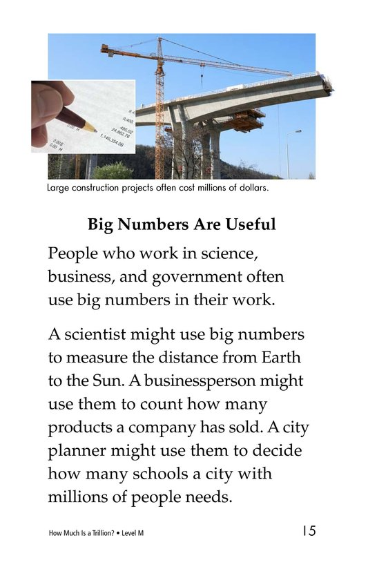 Book Preview For How Much Is a Trillion? Page 15
