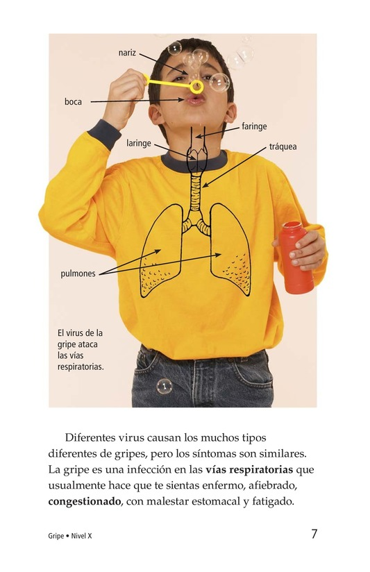 Book Preview For InFLUenza Page 7
