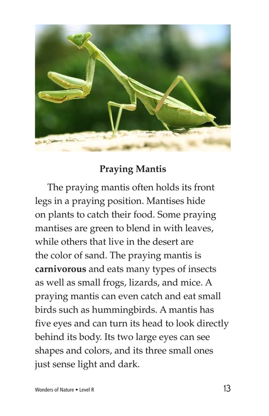 Book Preview For Wonders of Nature Page 13
