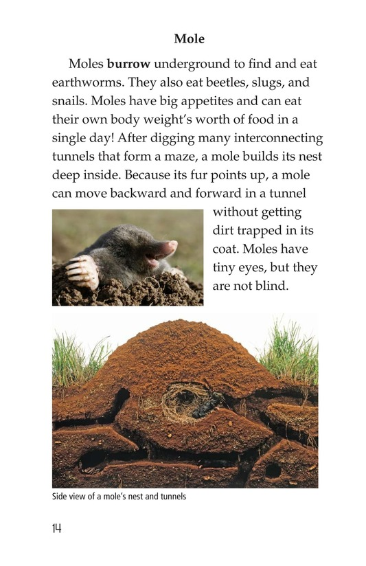 Book Preview For Wonders of Nature Page 14