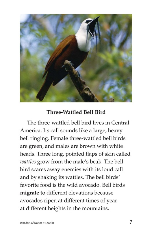 Book Preview For Wonders of Nature Page 7