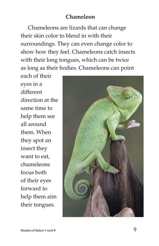 Book Preview For Wonders of Nature Page 9