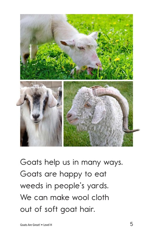 Book Preview For Goats Are Great! Page 5