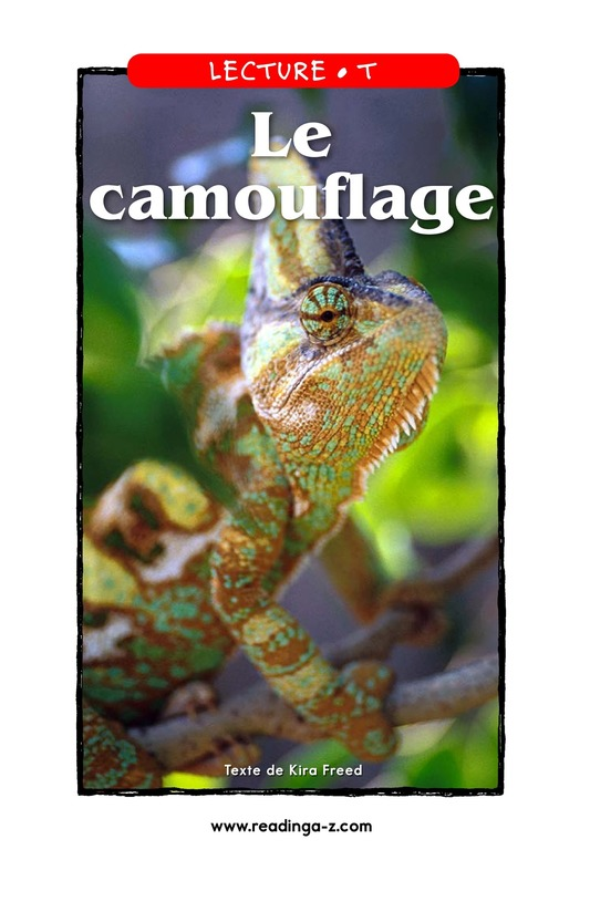 Book Preview For Camouflage Page 1