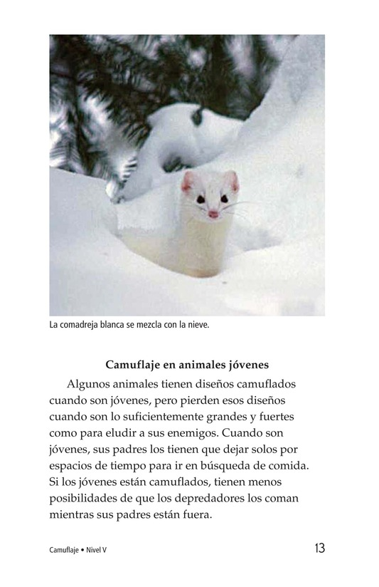 Book Preview For Camouflage Page 13