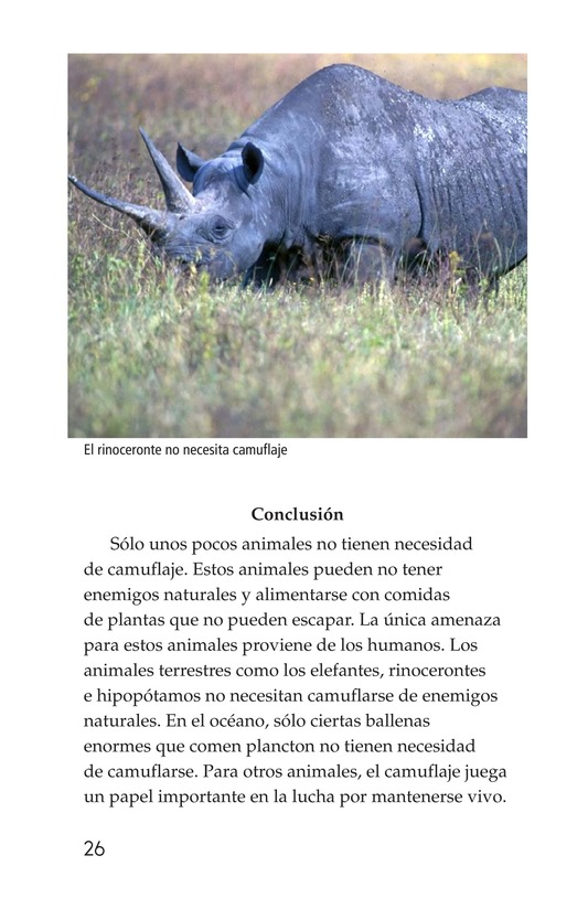 Book Preview For Camouflage Page 26