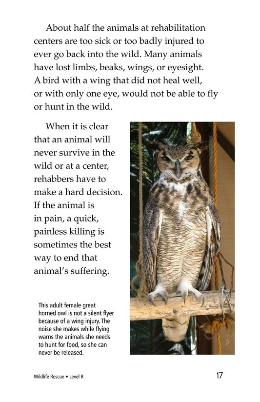 Book Preview For Wildlife Rescue Page 17