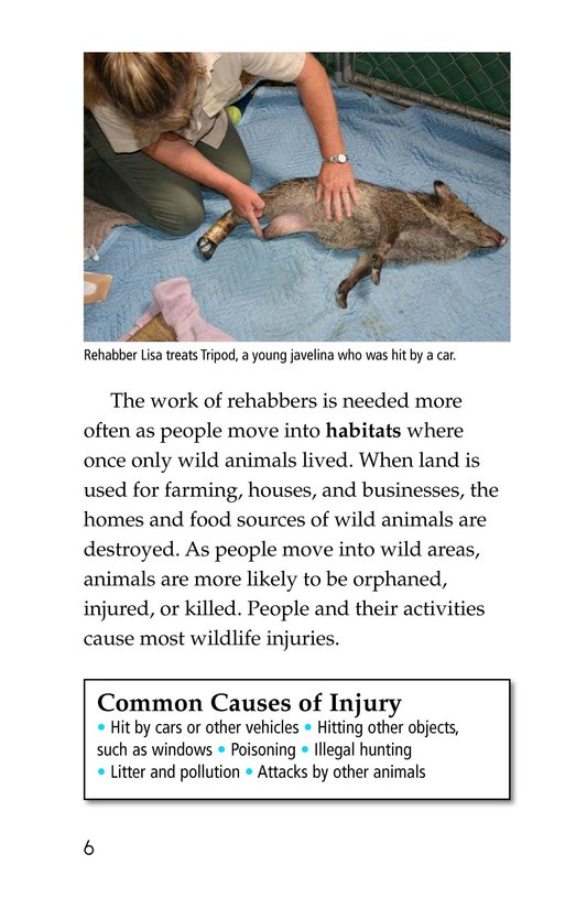 Book Preview For Wildlife Rescue Page 6