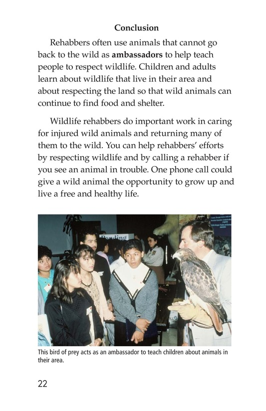 Book Preview For Wildlife Rescue Page 22