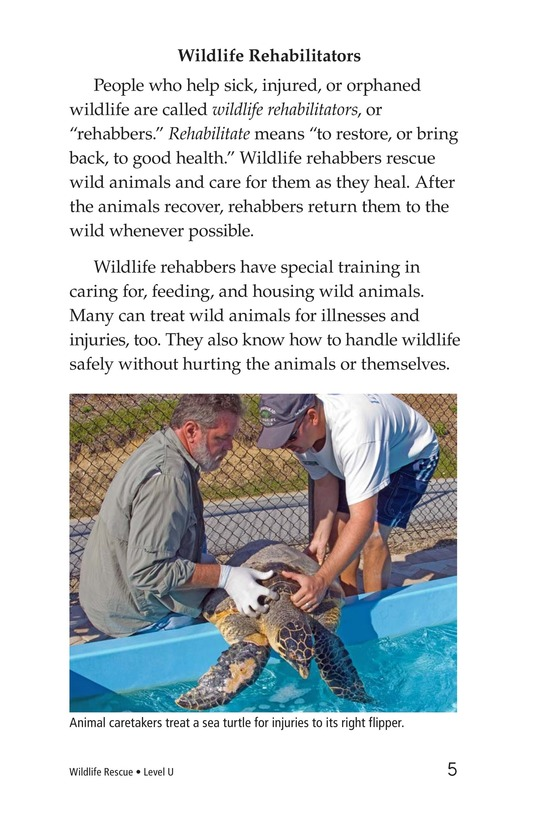 Book Preview For Wildlife Rescue Page 5