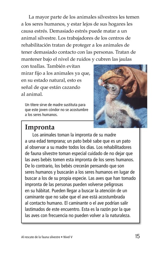 Book Preview For Wildlife Rescue Page 15