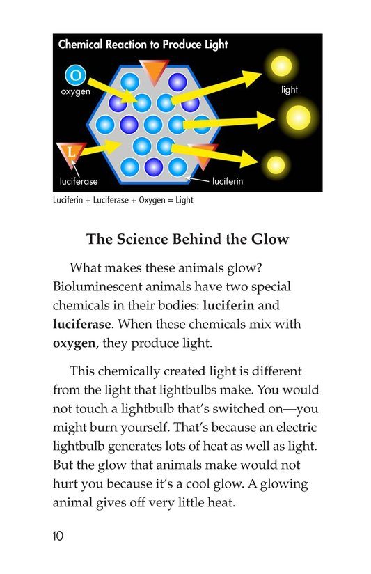 Book Preview For Glow-in-the-Dark Animals Page 10