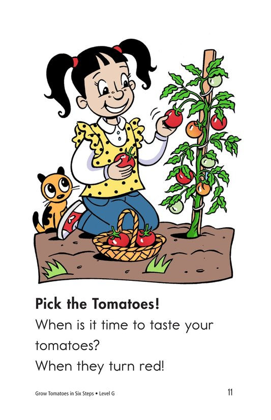 Book Preview For Grow Tomatoes in Six Steps Page 11