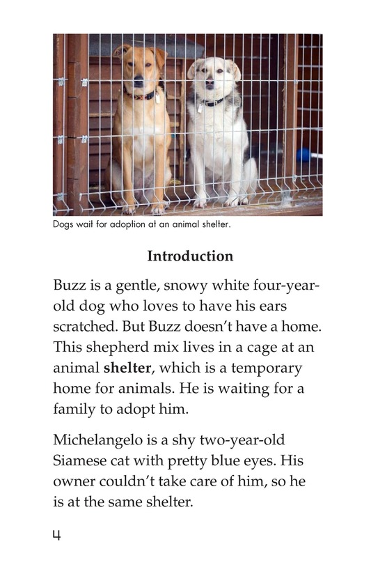 Book Preview For Shelter Pets Are Best Page 4