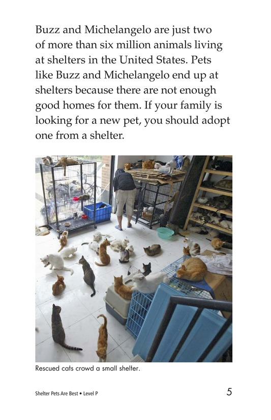Book Preview For Shelter Pets Are Best Page 5