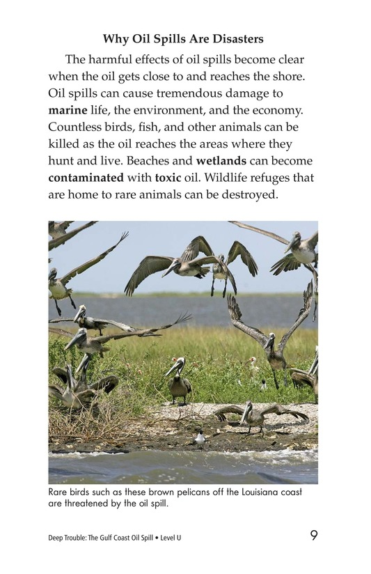 Book Preview For Deep Trouble: The Gulf Coast Oil Spill Page 9