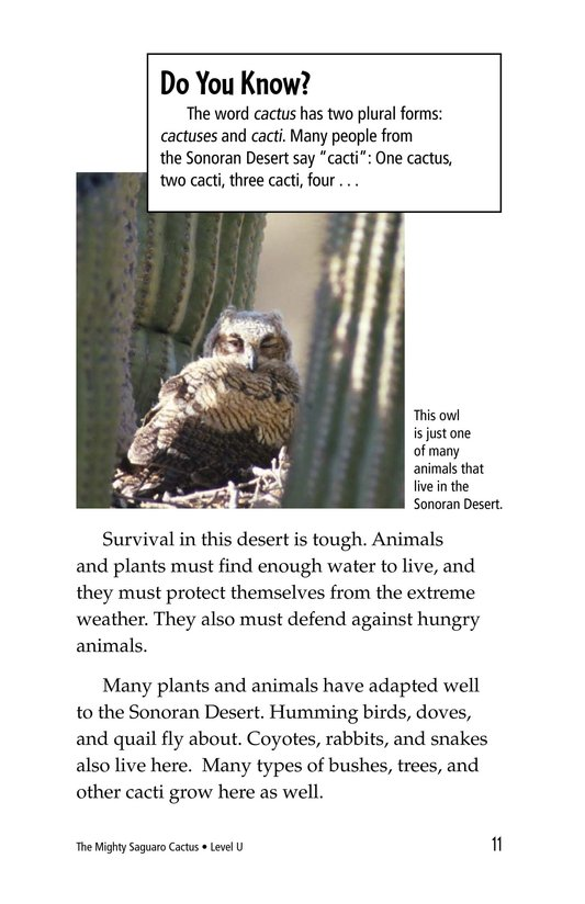 Book Preview For The Mighty Saguaro Cactus Page 11
