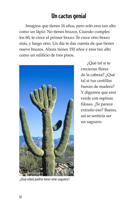 Book Preview For The Mighty Saguaro Cactus Page 4