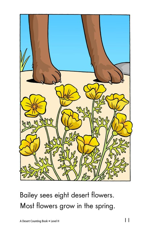 Book Preview For A Desert Counting Book Page 11