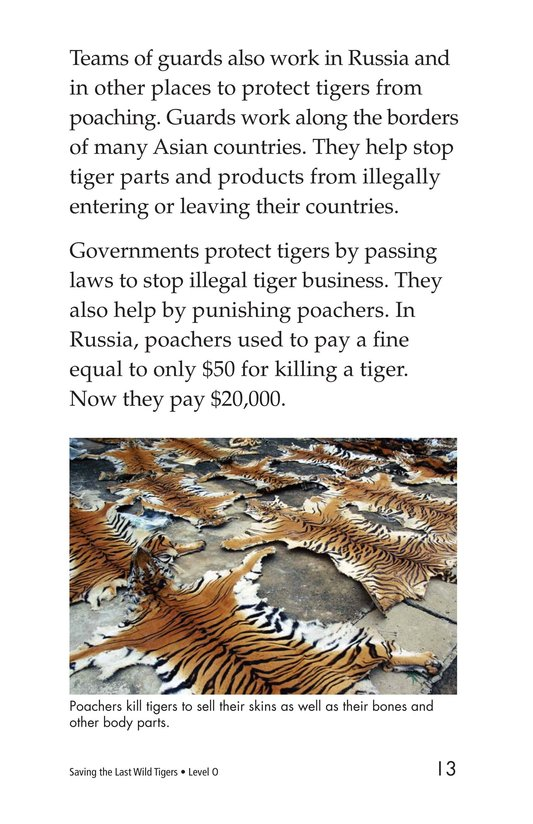 Book Preview For Saving the Last Wild Tigers Page 13
