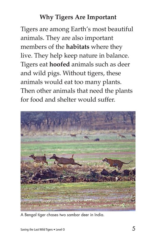 Book Preview For Saving the Last Wild Tigers Page 5