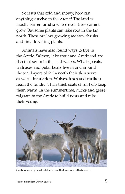 Book Preview For The Inuit: Northern Living Page 5
