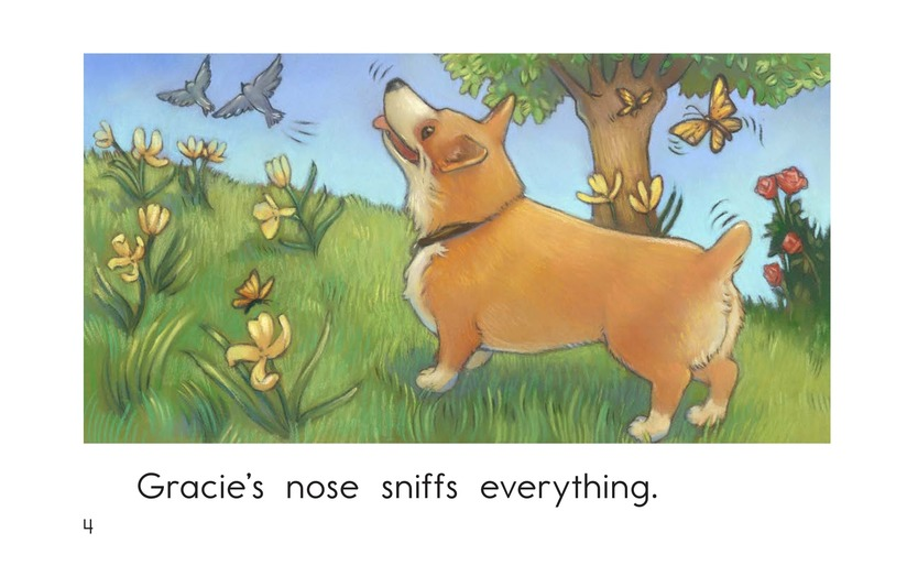 Book Preview For Gracie's Nose Page 4