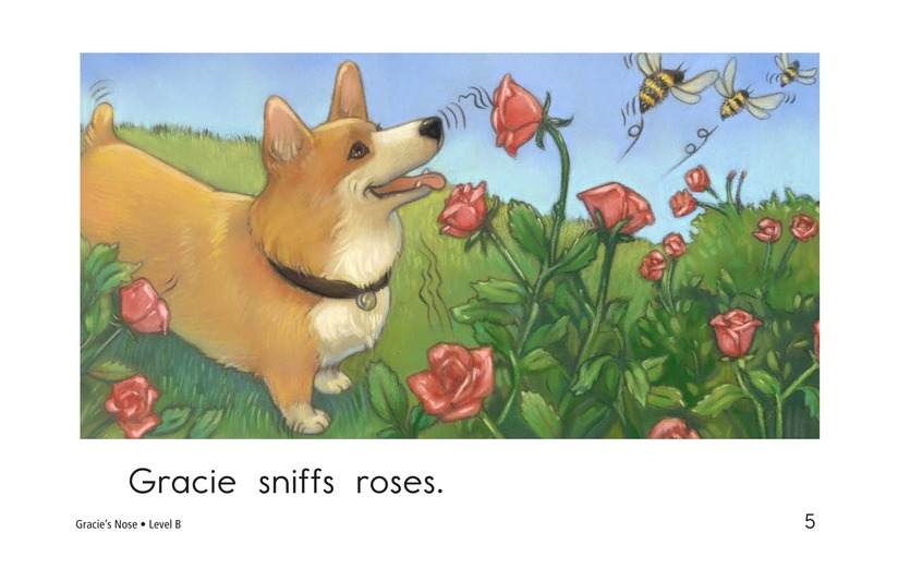 Book Preview For Gracie's Nose Page 5
