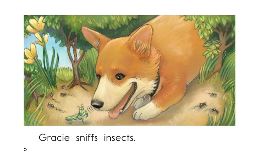 Book Preview For Gracie's Nose Page 6