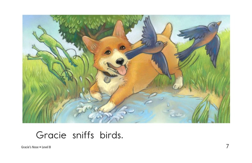 Book Preview For Gracie's Nose Page 7