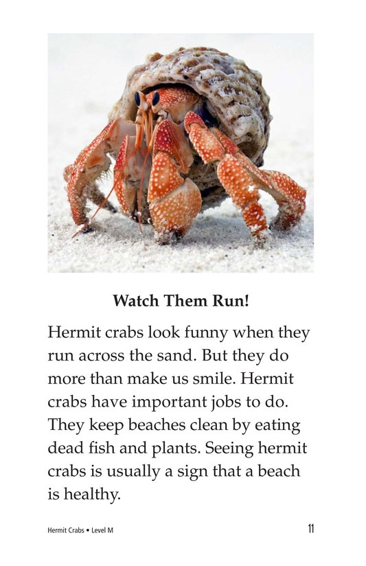 Book Preview For Hermit Crabs Page 11