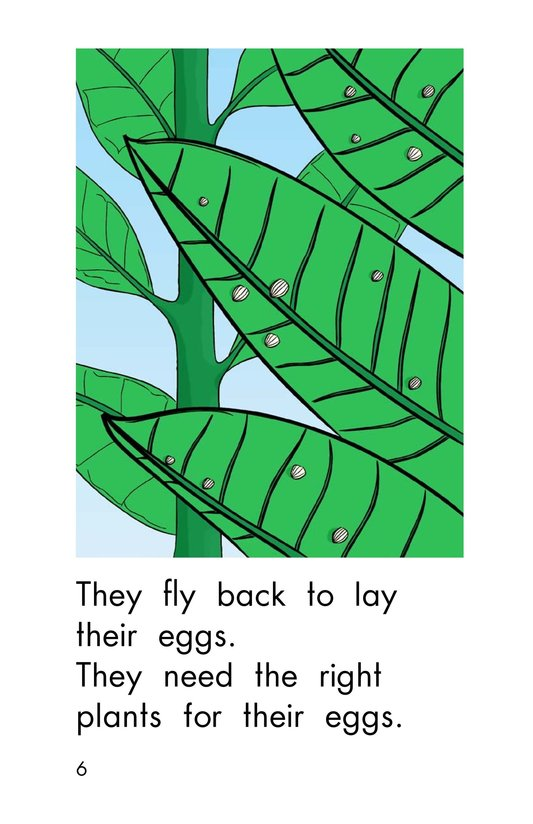 Book Preview For Welcome Back, Butterflies Page 6