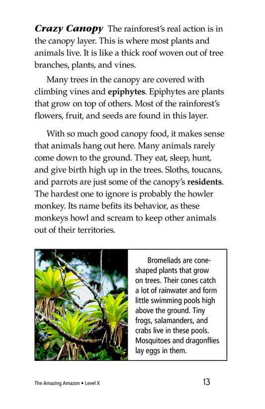 Book Preview For The Amazing Amazon Page 13