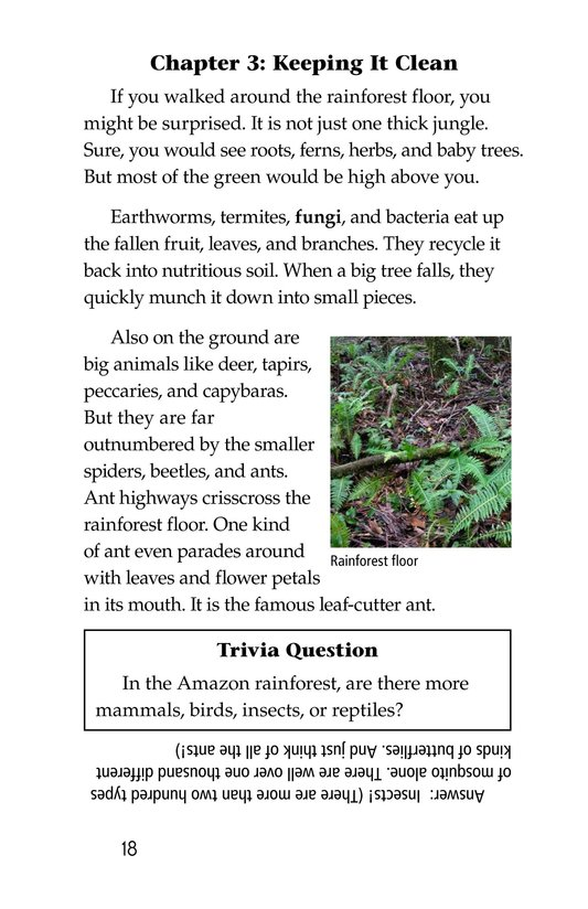Book Preview For The Amazing Amazon Page 18