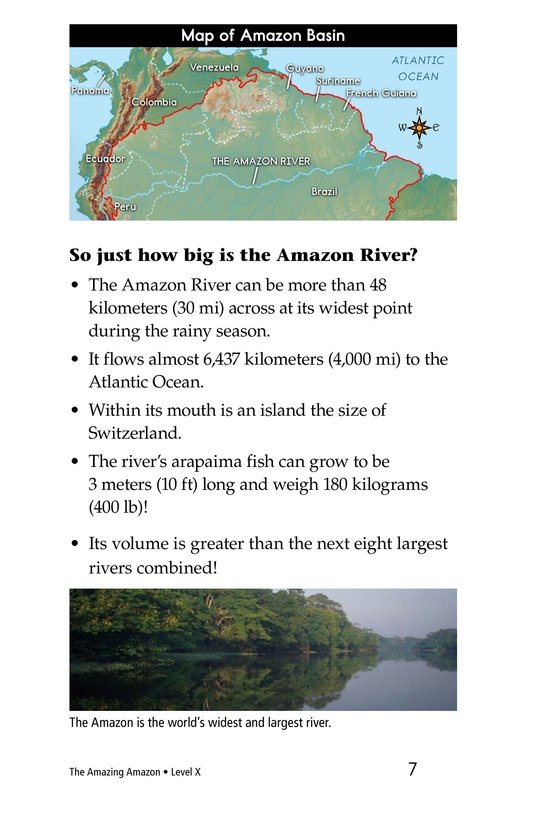 Book Preview For The Amazing Amazon Page 7