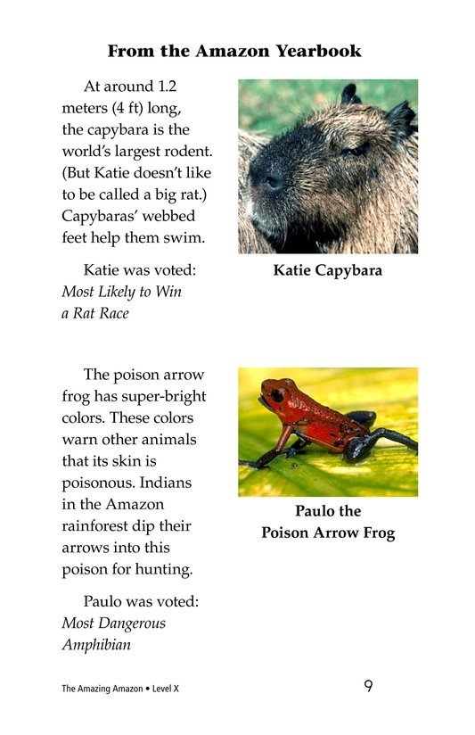 Book Preview For The Amazing Amazon Page 9