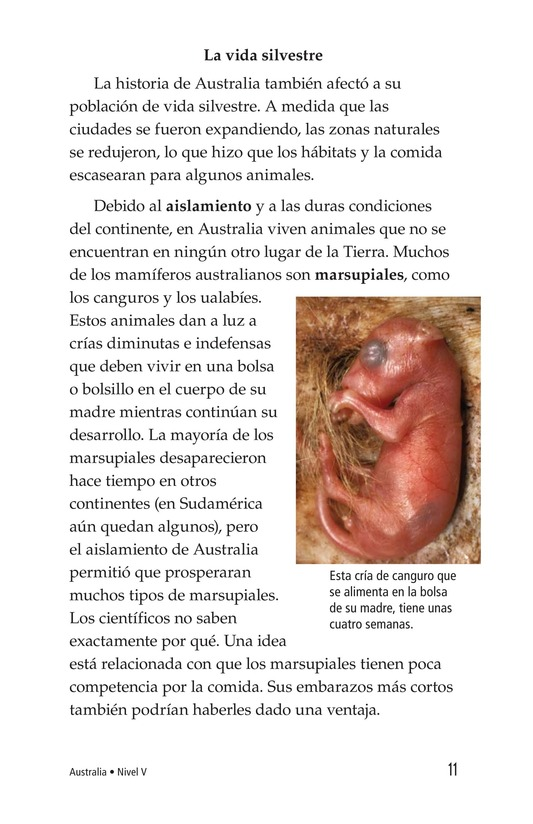 Book Preview For Australia Page 11