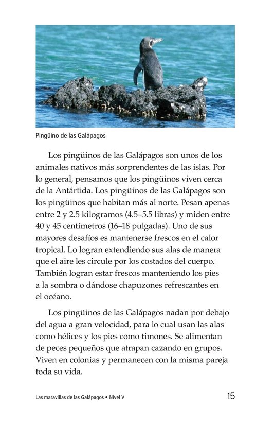Book Preview For Galapagos Wonder Page 15