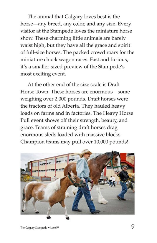 Book Preview For The Calgary Stampede Page 9