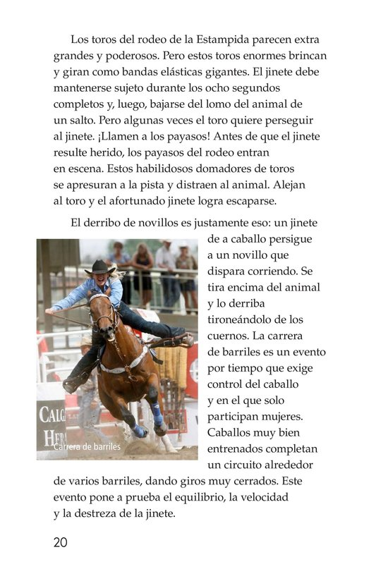 Book Preview For The Calgary Stampede Page 20