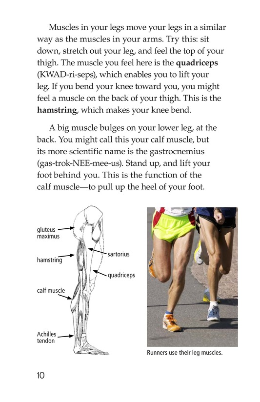 Book Preview For Get Moving! All About Muscles Page 10