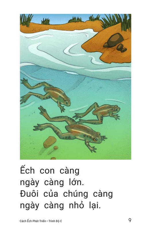 Book Preview For How Frogs Grow Page 9