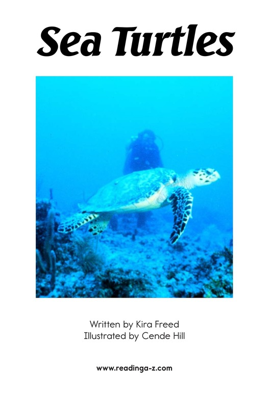 Book Preview For Sea Turtles Page 2