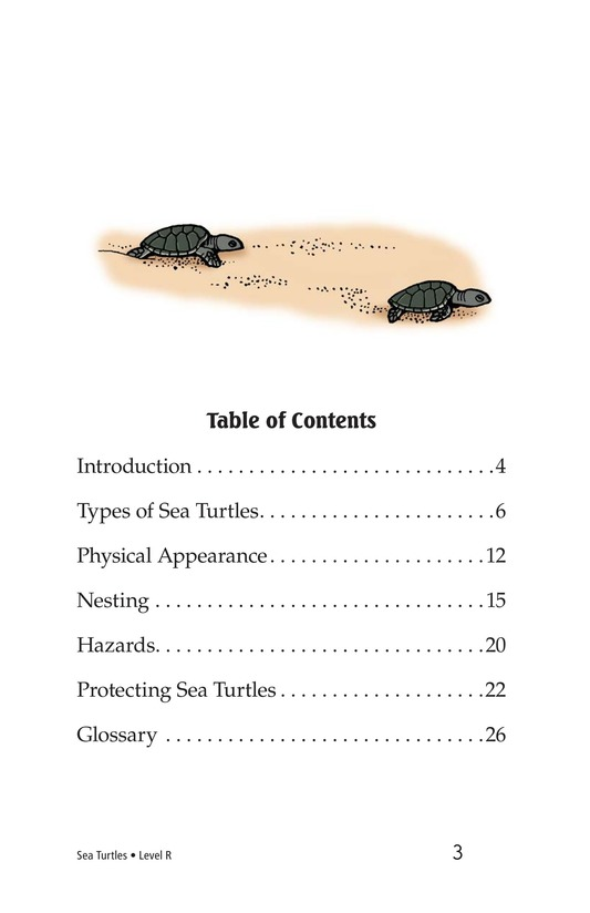 Book Preview For Sea Turtles Page 3