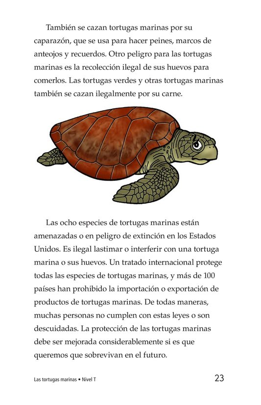 Book Preview For Sea Turtles Page 23